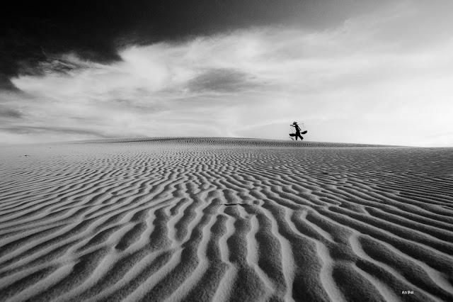 Qua đồi cát