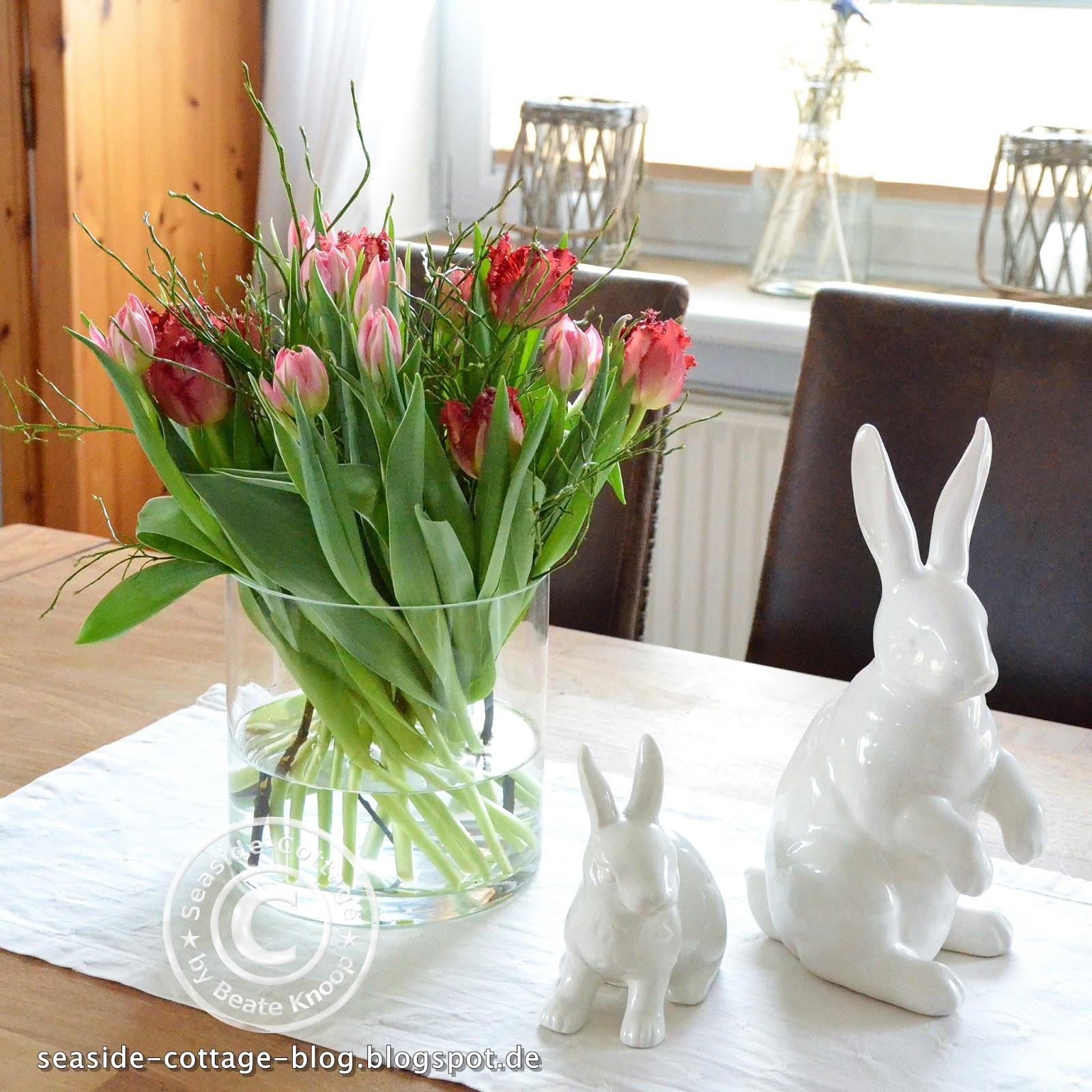 Friday Flowerday Meine Ersten Tulpen Dieses Jahr Und Wissenswertes