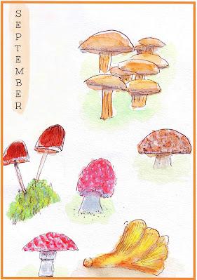 September illustration featuring watercolour mushrooms
