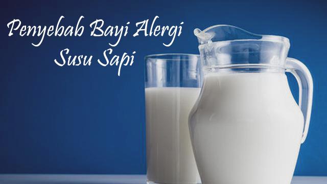 penyebab bayi alergi susu sapi