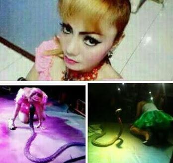 Irma Bule Pennyanyi Dangdut asal Kerawang dipatok Ular King Cobra