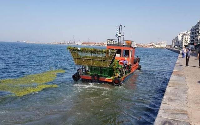 Θεσσαλονίκη: Στο μικροσκόπιο οι πηγές ρύπανσης του Θερμαϊκού - Έργα €420.000