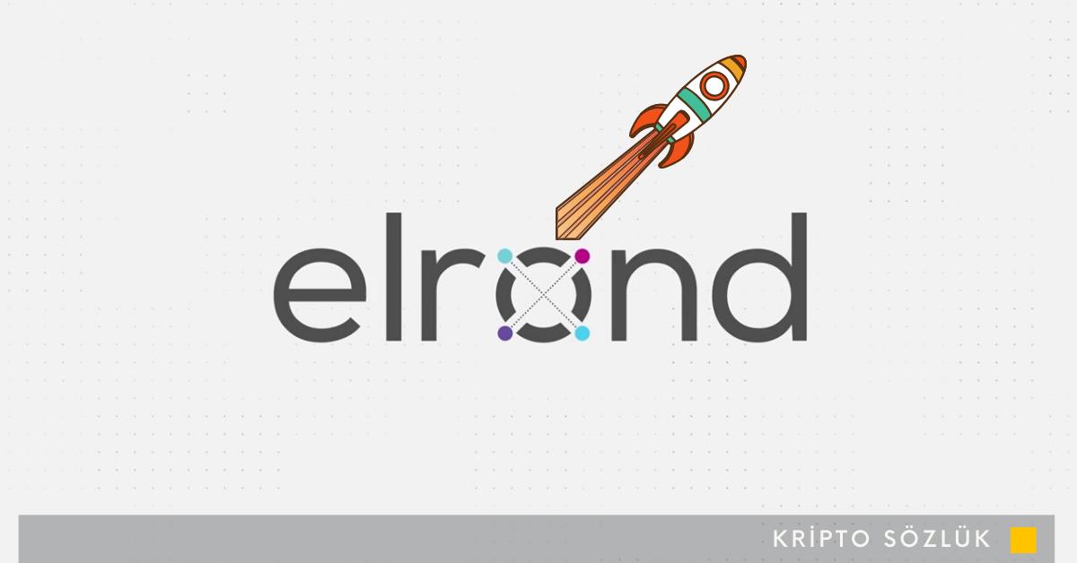 Elrond (ERD) Fiyatı Ortaklık Sonrası %35 Arttı