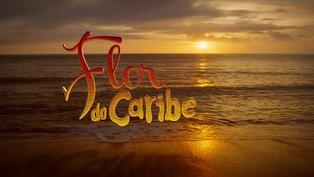 Confira os últimos capítulos da novela 'Flor do Caribe'