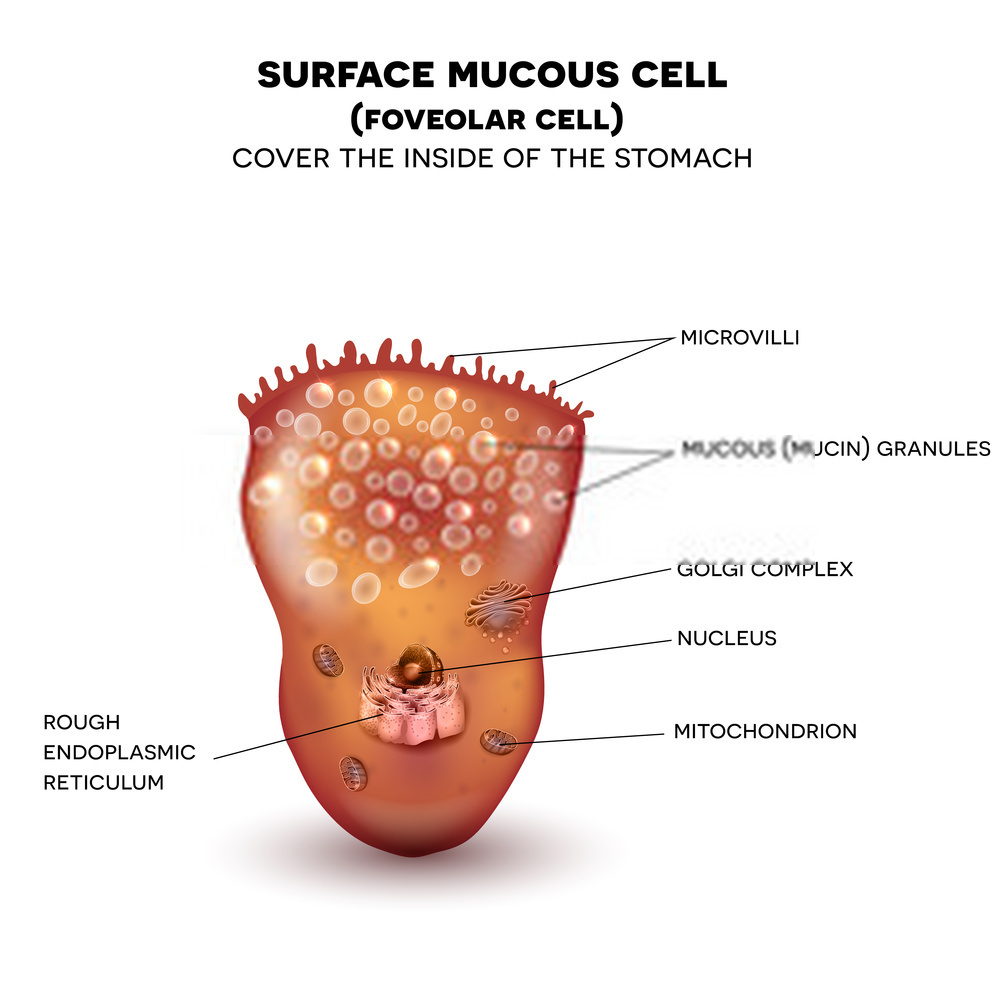 What Foods Can Reduce Mucus?