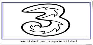 Lowongan Kerja PT Hutchison 3 Indonesia (Provider 3) Sukabumi