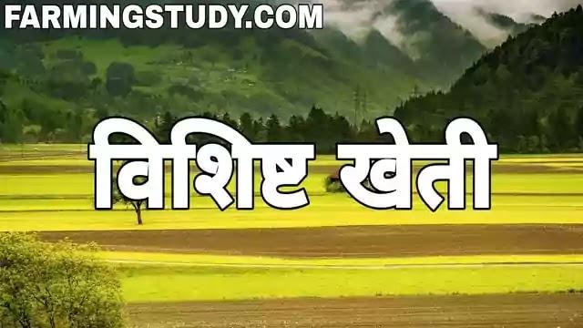 विशिष्ट खेती किसे कहते है अर्थ एवं परिभाषा, specialised farming in hindi, विशिष्ट खेती के प्रमुख लाभ/गुण, विशिष्ट खेती से होने वाली प्रमुख हानियां/दोष