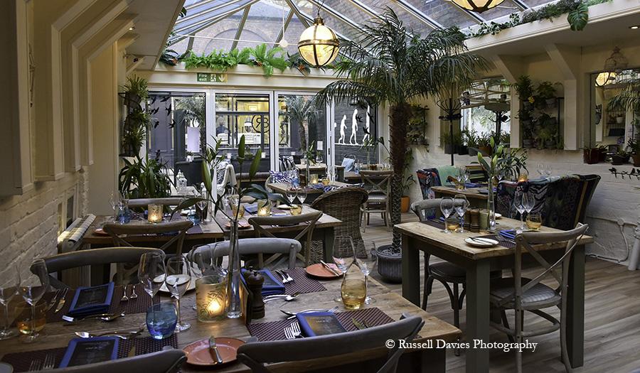 Conservatory at Darwin's Kitchen Shrewsbury