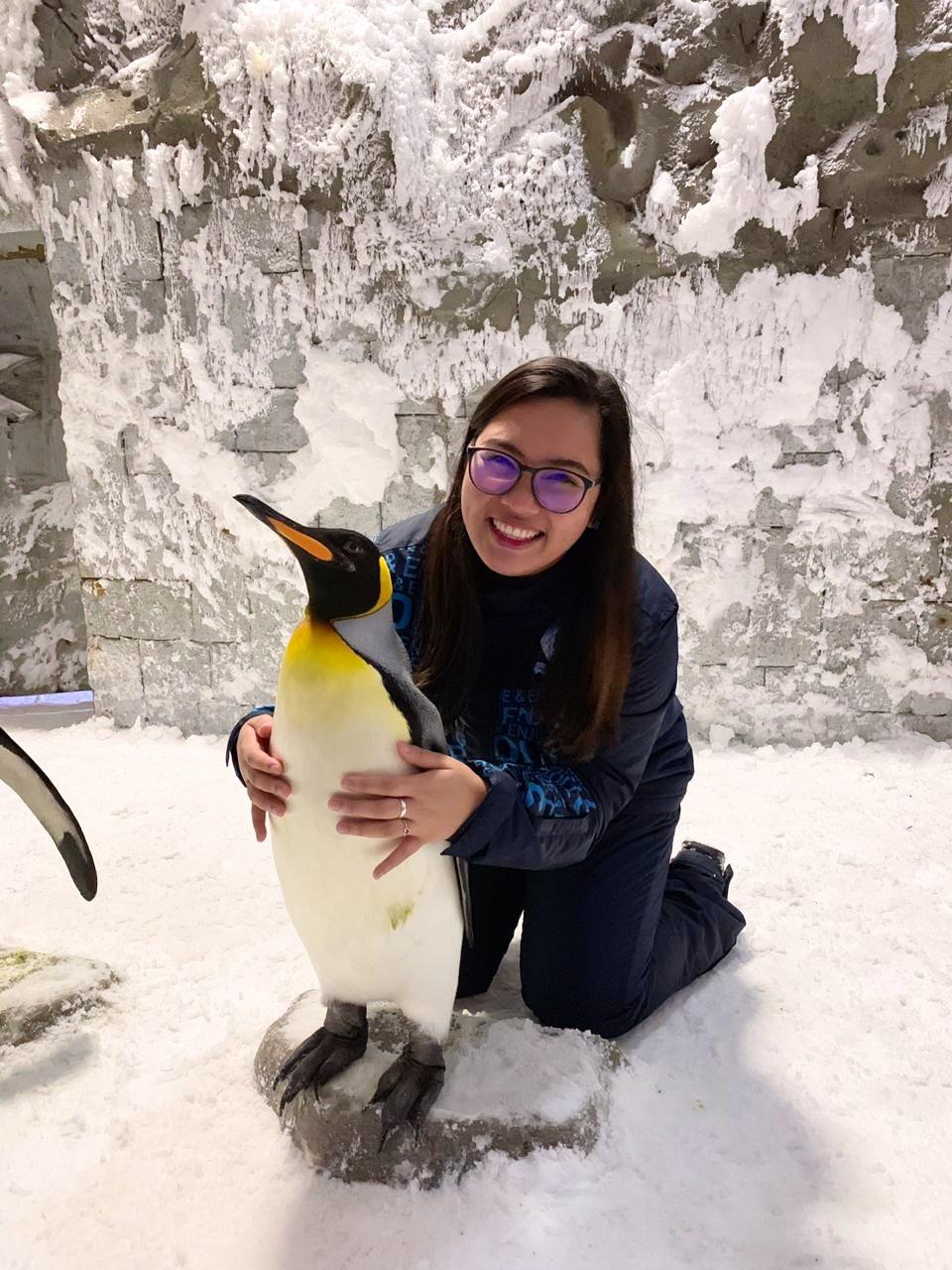 Ski Dubai Penguin Encounter 1