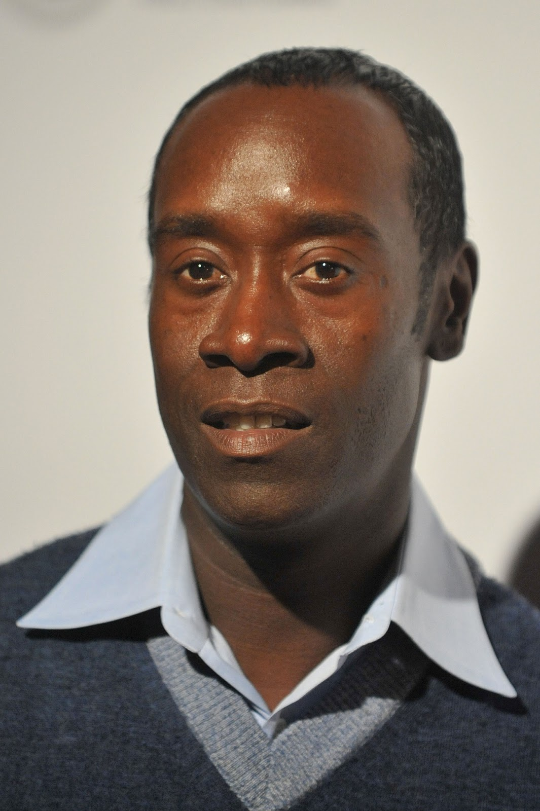 Don Cheadle Hairstyle Men Hairstyles Men Hair Styles