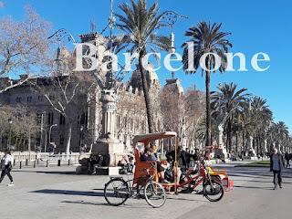 palmiers et vélos à Barcelone