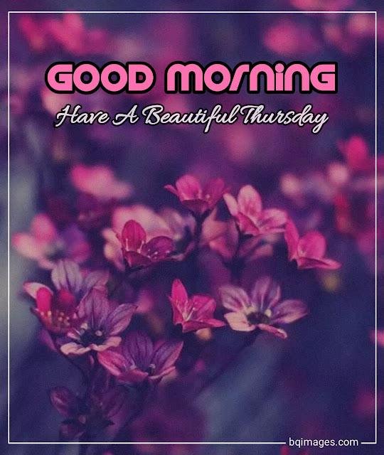 beautiful good morning happy thursday images
