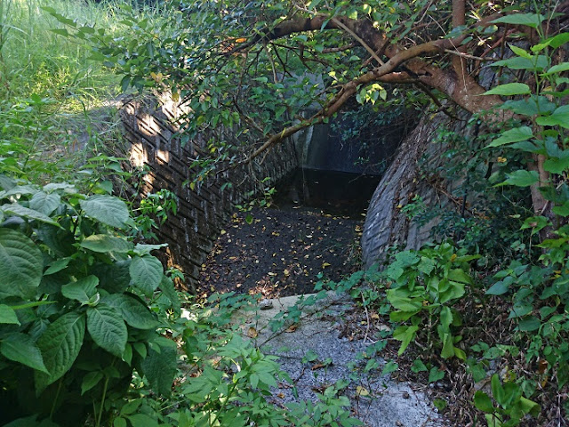 池味集落の写真