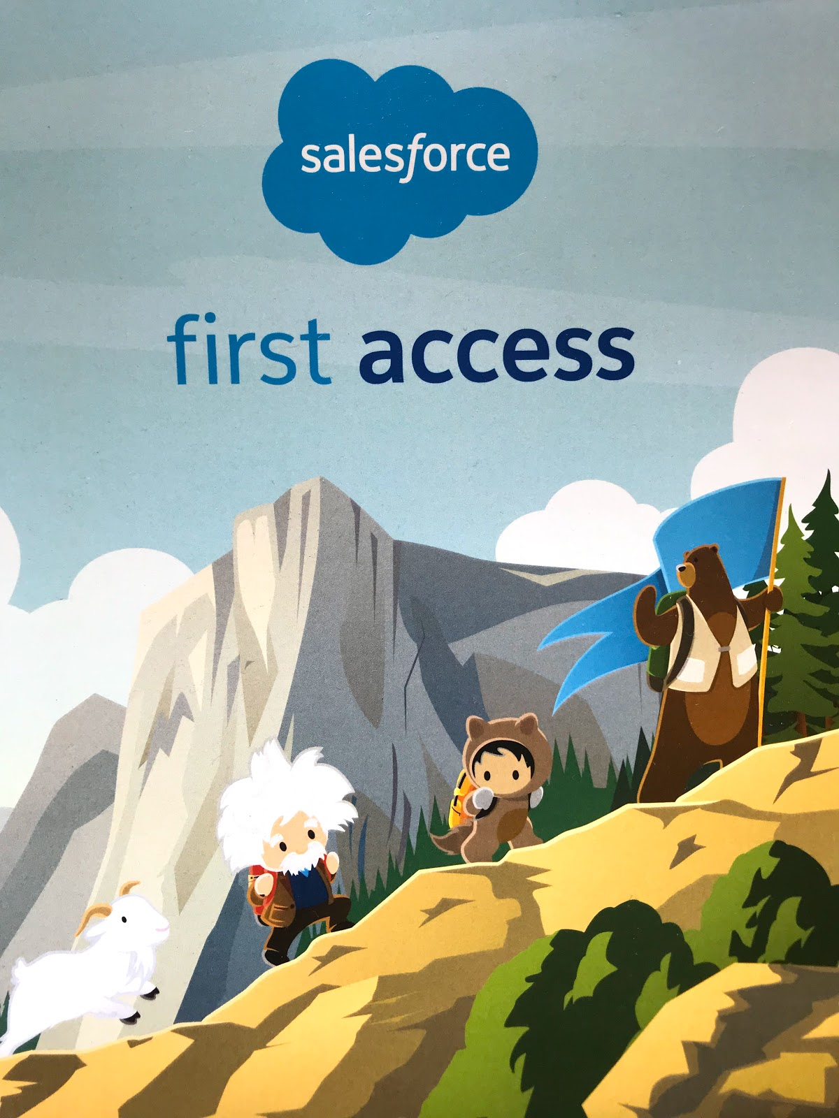 "Salesforce MVP Tigh Loughhead invited to Salesforce's inaugural ""First Access"" program"