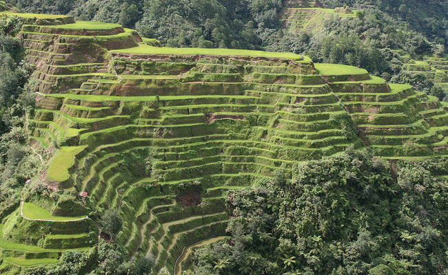 Xvlor Banaue rice terraces and agricultural complexity 2000 years ago by Ifugao tribe
