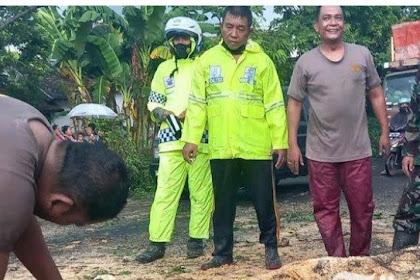 Hujan Deras Dan Angin Kencang Terjang Lumajang,Pohon Tumbang Tutup Jalan Nasional
