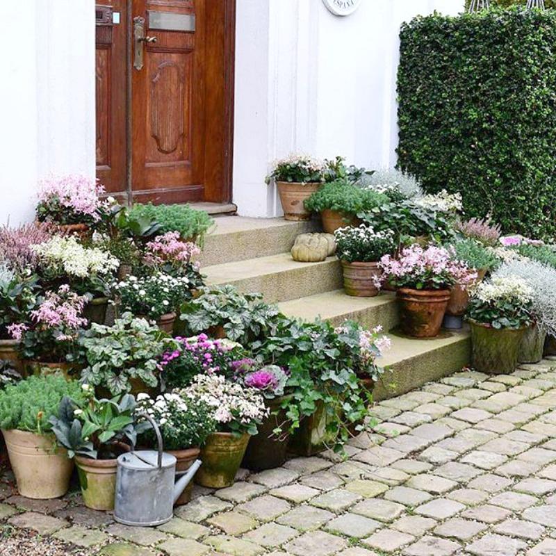 Componer jardines con macetas guia de jardin - Jardines en macetas ...