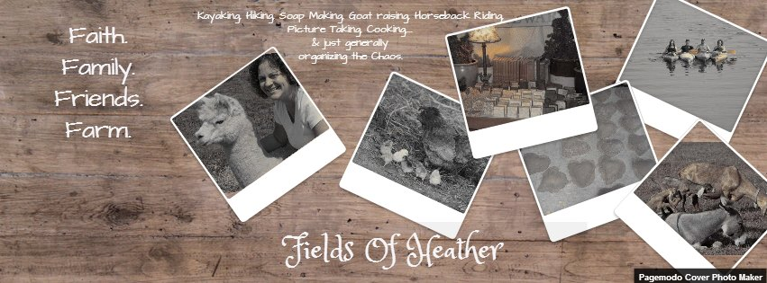 Fields Of Heather Homiletics Worksheet