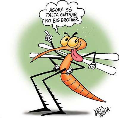 Aedes aegypti oferece trégua ao governo em troca de alguns ministérios e cargos de confiança
