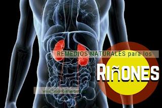 Remedios caseros para los riñones