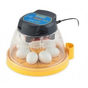 mini inkubator penetasan telur unggas ayam