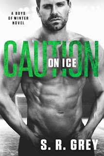 Caution on Ice by SR Grey
