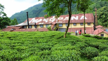 Jungpana tea estate management ready for meeting