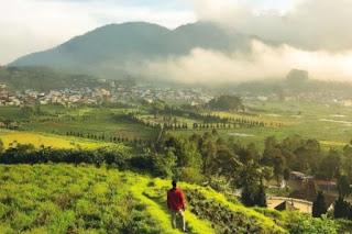 Wisata Dieng Banjarnegara Buka Lagi Jangan Lupa Install Aplikasi Syarat Perjalanan PeduliLindungi