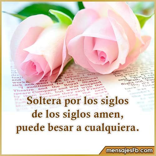 frases mujeres solteras