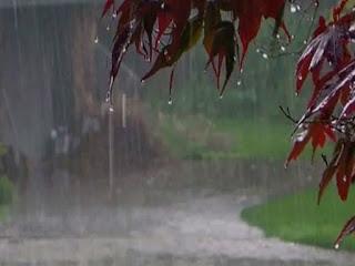 मध्य प्रदेश में आफत की बारिश, 24 घंटे के दौरान कहां दर्ज हुई कितनी वर्षा ?