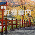[日本] 為紅葉之旅作準備 - 京都篇
