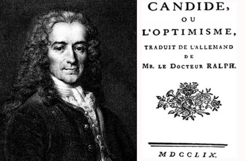 a literary analysis of the novel candide by voltaire Literary criticism (1400-1800): candide, voltaire - arthur scherr (essay date spring 1993) candide, voltaire - arthur scherr (essay date spring 1993) 1 regarding emilie more as a colleague than a lover, voltaire's lust for her was unwontedly abashed with his.