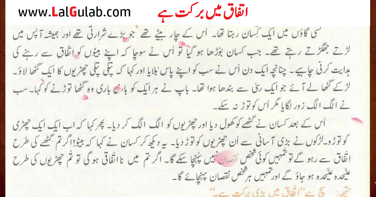 essay on islam ki barkat in urdu The world's #1 drugstore essay on islam in urdu college essay help | rbhs  guidance department  shall we essay ki islam in on urdu barkatain het artikel.
