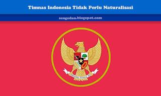 Timnas Indonesia Tidak Perlu Naturalisasi