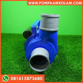 Pompa Air Untuk Kolam Ikan Hias