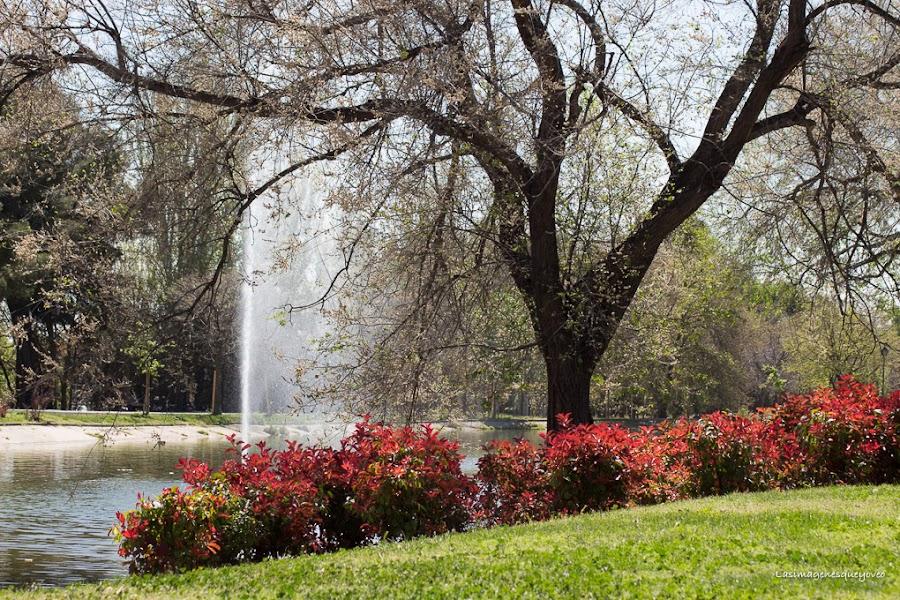 Parque de Tierno Galván de Madrid