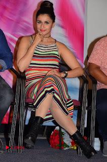Mannara Chopra Latest Pictures at Jakkanna Movie Platinum Disc Function ~ Celebs Next