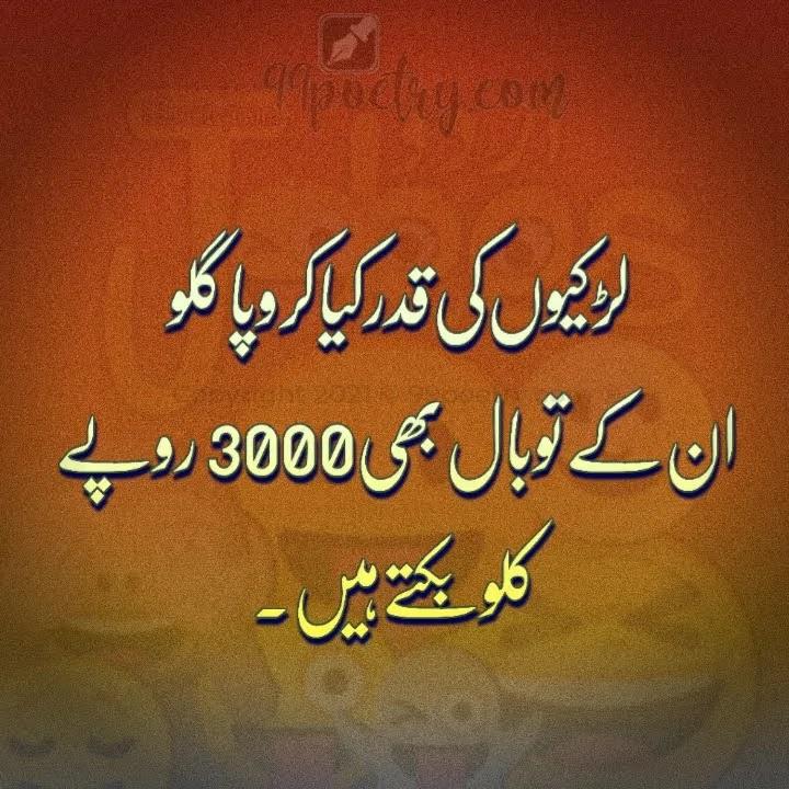 funy Shayari urdu Maib