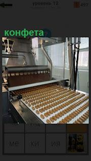 Станок для производства конфет и конвейер по которому они идут ровными рядами
