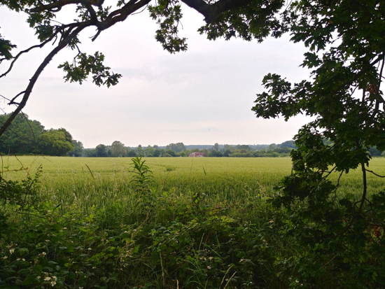 BrP5 - between Bradmore Lane and Potterells - proposed for 290 homes Image by North Mymms News released under Creative Commons