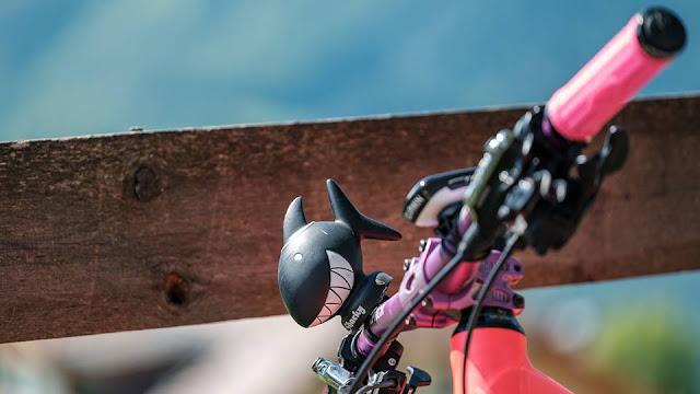 Mountainbikeblog Touren in Österreich, Italien und Deutschland