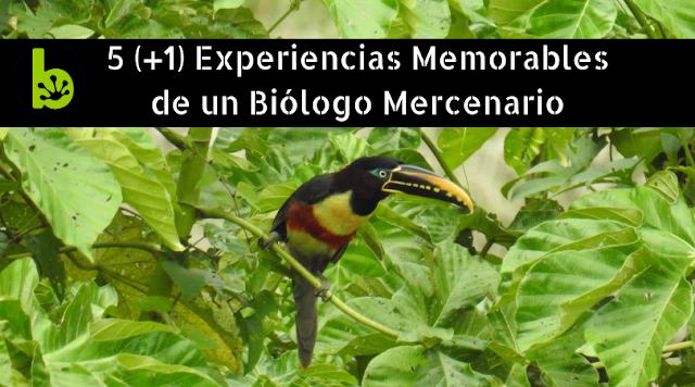 experiencias biología conservación