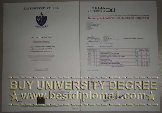 University of Hull degree and transcript