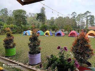 Taman Bunga Bee Park Majalengka Bisa Untuk Berkemah Camping