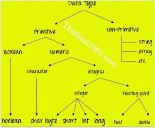 Các biến và kiểu dữ liệu Java