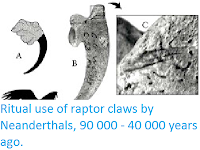 https://sciencythoughts.blogspot.com/2012/03/ritual-use-of-raptor-claws-by.html