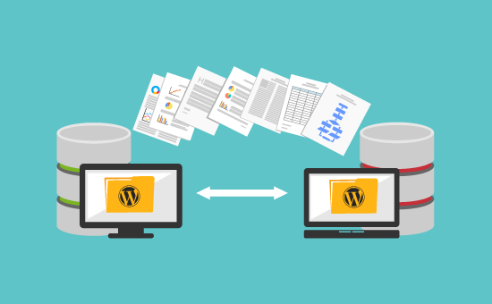 Why should you go with WordPress web hosting with Hosting Raja?