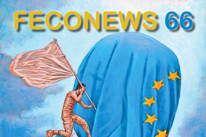 MAGAZINE: FECONEWS 66