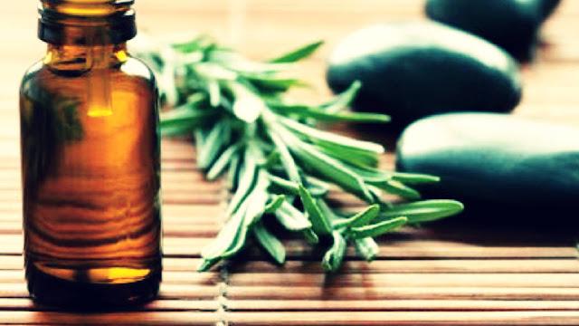 Kandungan Kimia Akar Wangi, Minyak Atsiri Obat Tradisional