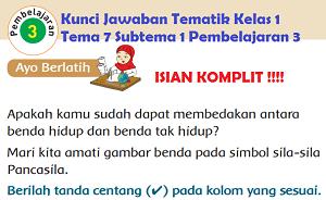 Kunci Jawaban Tematik Kelas 1 Tema 7 Subtema 1 Pembelajaran 3 www.jokowidodo-marufamin.com